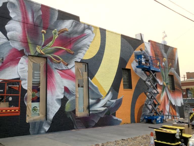 Jason T. Graves, Crush Walls, Mural, Festival, Street Art, Denver Mural